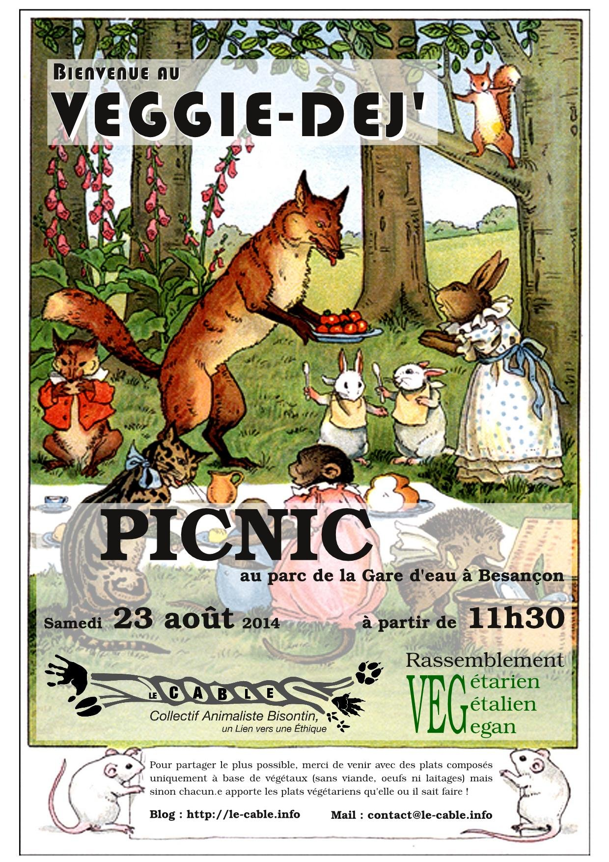 Affiche-pic-nic-le.cable
