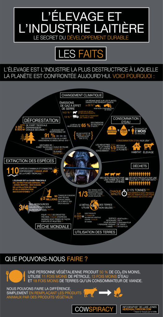 Cowspiracy-Infographie finale